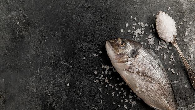 Peixe de frutos do mar crus e sal marinho copiar espaço