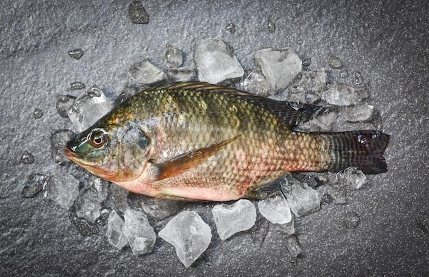 Peixe de tilápia de água doce para cozinhar alimentos no restaurante asiático tilápia crua fresca no gelo com fundo escuro placa