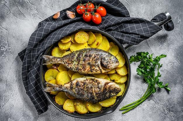 Peixe dorado grelhado com batatas em uma panela. fundo cinza. vista do topo