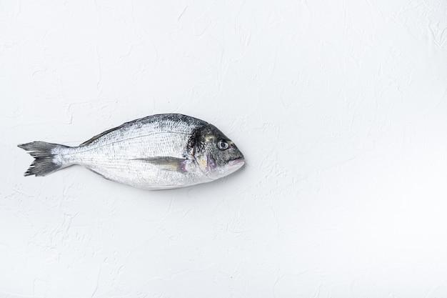 Peixe dourado do pargo ou dourada no branco