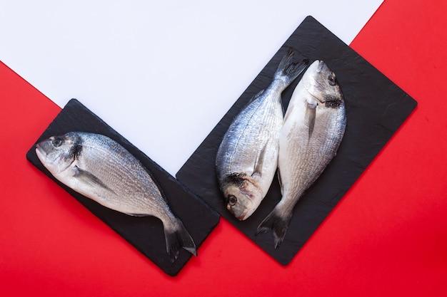 Peixe dourado fresco em uma tábua preta sobre fundo branco e vermelho