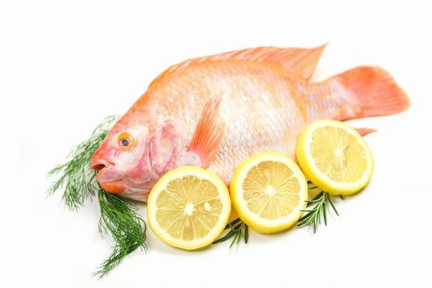 Peixe fresco com ervas especiarias alecrim e limão - tilápia de peixe cru vermelho isolada no fundo branco