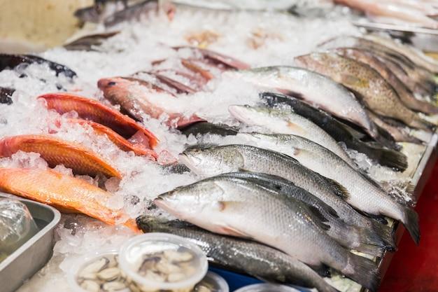 Peixe fresco com gelo no mercado de frutos do mar de rua na tailândia