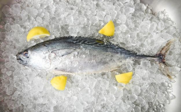 Peixe fresco com limão no gelo no mercado - vista superior de frutos do mar de peixe cru, atum longtail, atum pequeno oriental