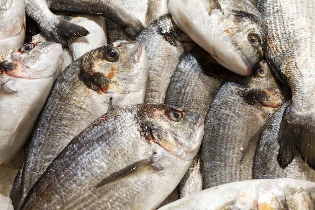 Peixe fresco cru a granel no mercado de peixes