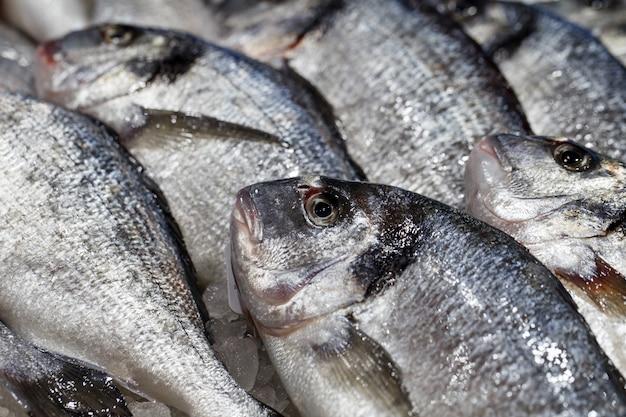 Peixe fresco cru em close-up a granel no gelo no mercado de peixes
