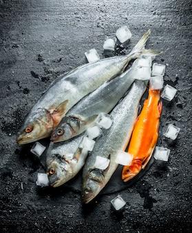 Peixe fresco cru em uma placa de pedra com gelo. sobre fundo preto rústico