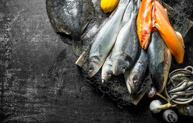 Peixe fresco cru na bandeja com alho e especiarias na mesa rústica.