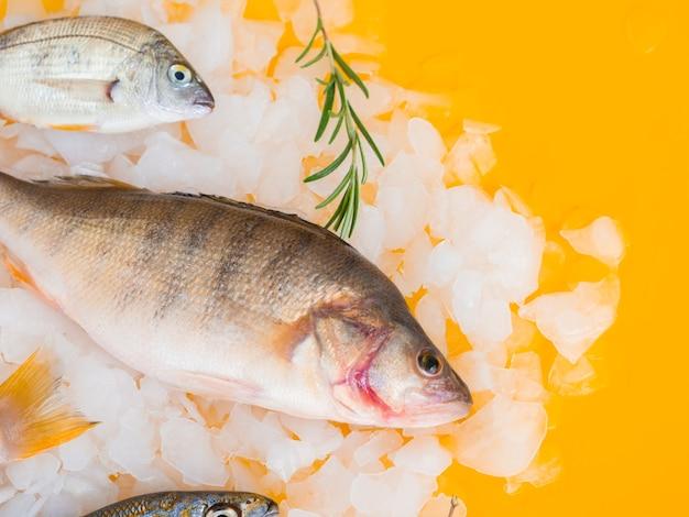 Peixe fresco de alto ângulo na mesa