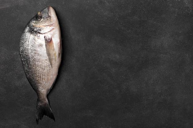 Peixe fresco de dorado. copie o espaço, vista superior