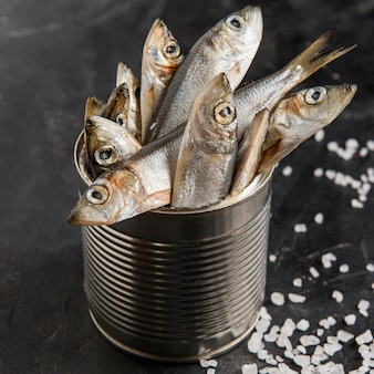 Peixe fresco delicioso e sal marinho