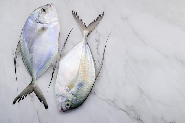Peixe fresco longfin trevally montado no fundo da mesa da cozinha de mármore branco. vista superior e copie o espaço.