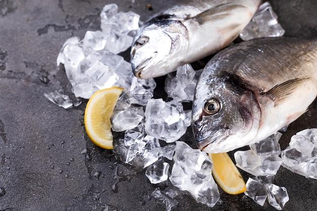 Peixe fresco no gelo