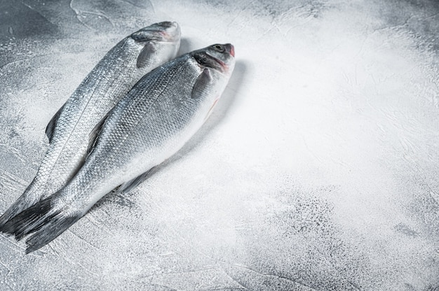 Peixe fresco robalo cru na mesa da cozinha. fundo branco. vista do topo. copie o espaço.