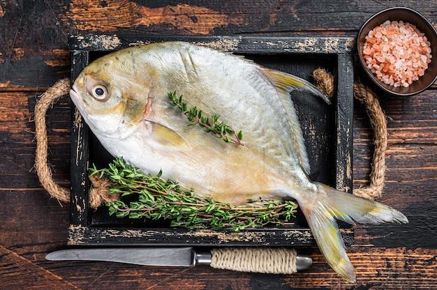 Peixe-manteiga de peixe cru ou pompano com ervas em uma bandeja de madeira. fundo de madeira escuro. vista do topo.