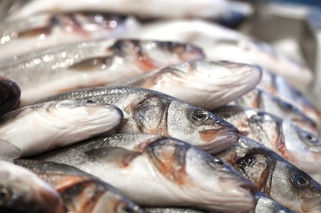 Peixe no gelo, fresco cru inteiro refrigerado, no mercado de peixes, bokeh.