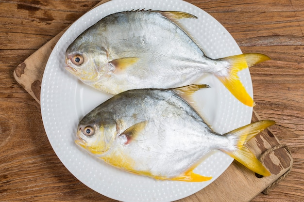 Peixe pomfret dourado