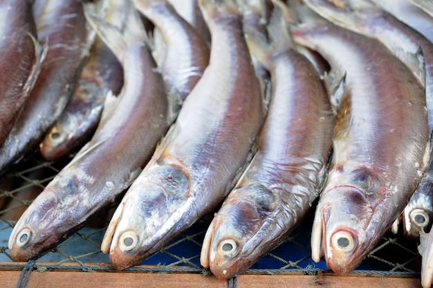 Peixe seco no mercado flutuante, tailândia