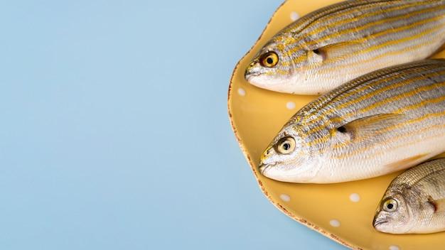 Peixes frescos de close-up com brânquias