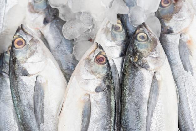 Peixes frescos no fundo do gelo