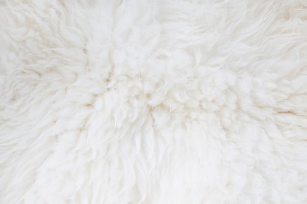 Pêlo branco close-up