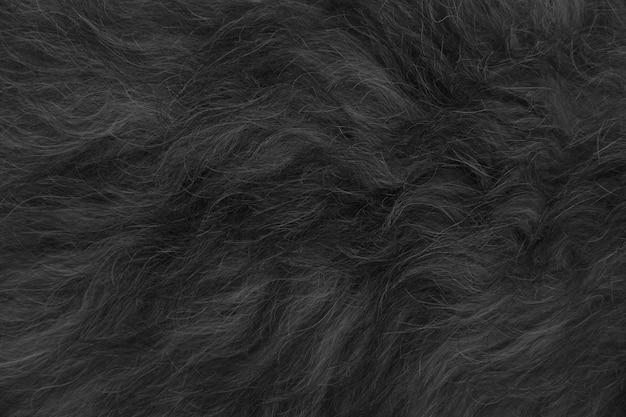 Pêlo de animal