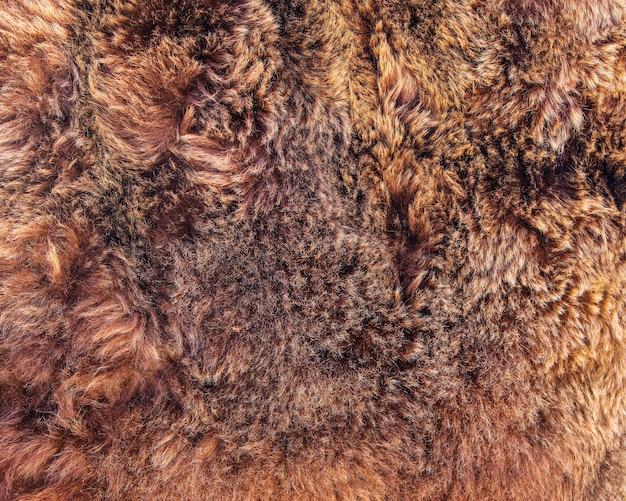 Pelo de urso marrom.