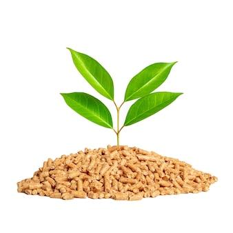 Pelotas de madeira e folhas de árvores isoladas no fundo branco. biomassa ecológica de combustível.
