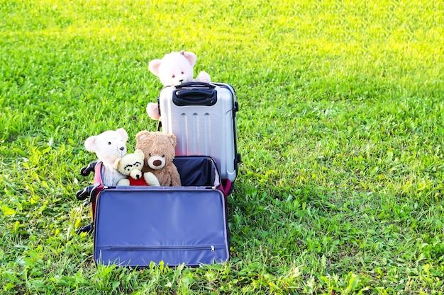 Peluches e bolsas de viagem