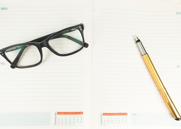 Pen e specs in diary