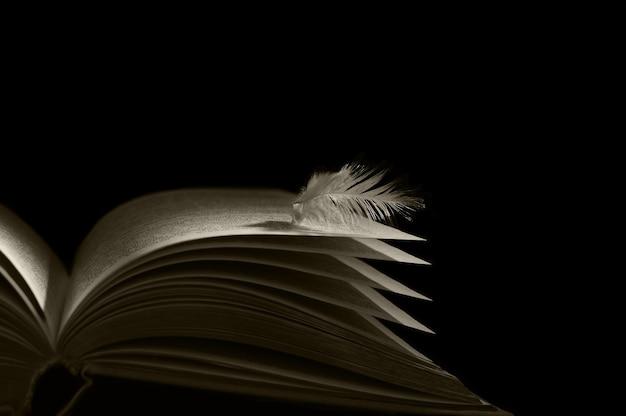 Pena de anjo deitada nas páginas de um livro aberto