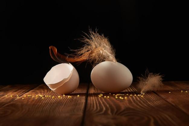 Pena de frango, ovo e cascas de ovo em uma mesa de madeira em um escuro.