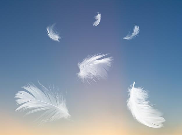 Pena flutuando no céu crepuscular do ar
