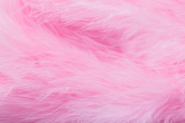 Penas de pássaro-de-rosa no estilo suave e borrão, fundo de penas rosa fofo