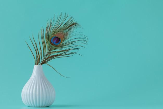 Penas de pavão no fundo liso