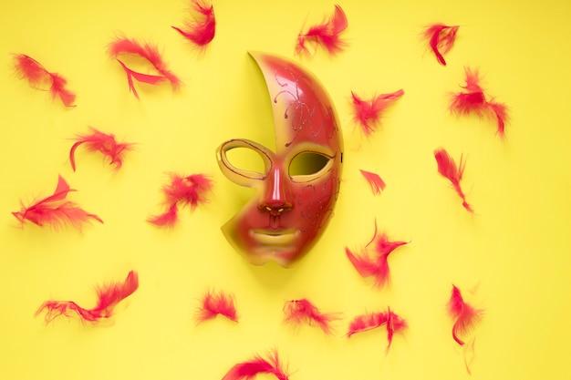 Penas em torno de máscara bonita