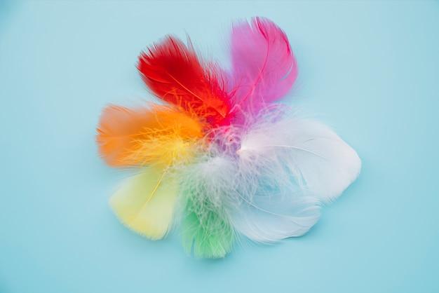 Penas multicoloridas em círculo