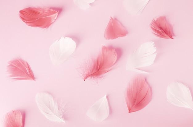 Penas rosa e brancas