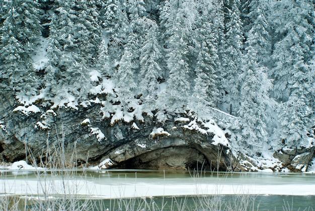 Penhasco arborizado de calcário na margem de um rio congelado de inverno em tempo nublado