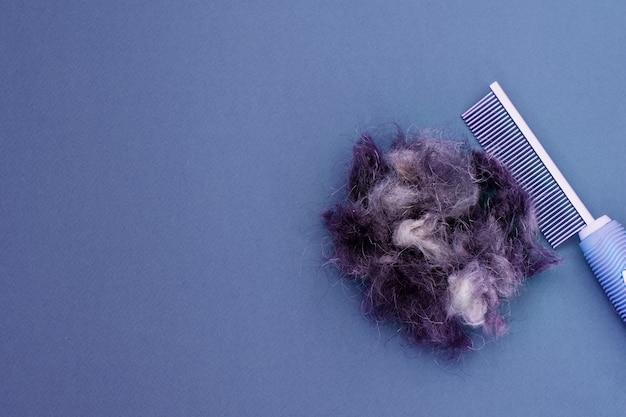 Pente de ferramentas de aliciamento, tesoura para unhas e um pedaço de cabelo de animal de estimação, postura plana. espaço para texto. conceito de aliciamento.