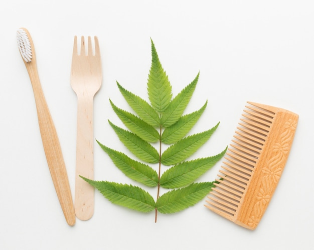 Pente ecológico e escova de dente