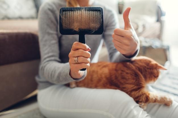 Penteando o gato ruivo com escova de pente em casa. dono de mulher cuidando do animal de estimação para remover o cabelo.