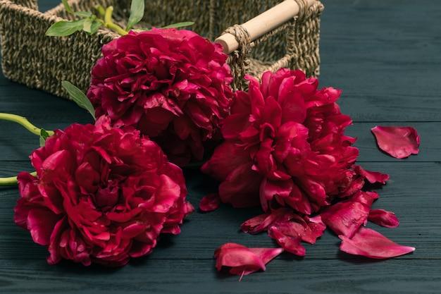 Peônia de flor de primavera. feliz dia das mães. cartão de cumprimentos do dia das mães. presente de dia das mães