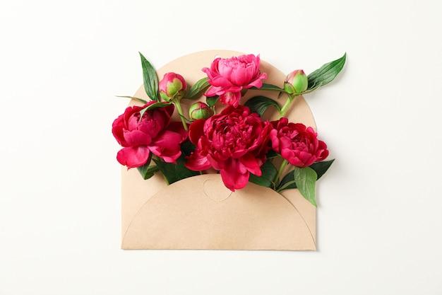 Peônia linda flores em envelope em fundo branco