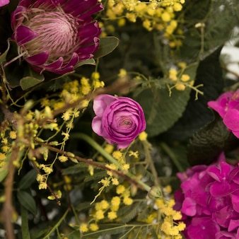 Peônia roxa e flor de mimosa amarela no buquê