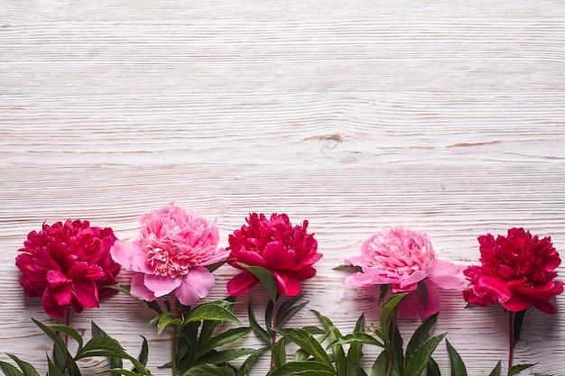 Peônias rosa sobre fundo cinza de madeira.