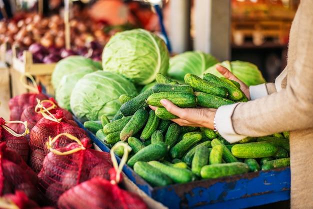 Pepinos frescos de compra no mercado dos fazendeiros. pessoa irreconhecível.