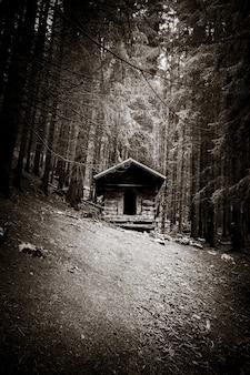 Pequena cabana de madeira abandonada em uma floresta de abetos profunda e escura. preto e branco
