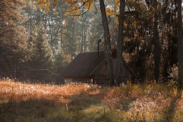 Pequena cabana de madeira em um prado ensolarado na floresta de outono