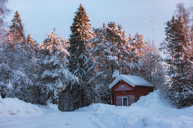 Pequena cabana vermelha em uma área de neve cercada por pinheiros cobertos de neve com um toque de raios de sol